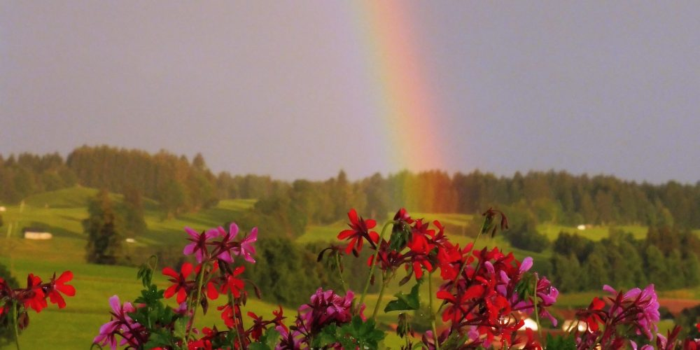 3. Regenbogen